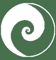 Staune hypnose logo transparent
