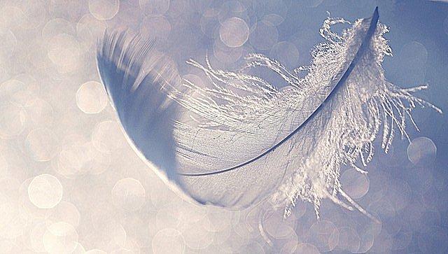 tidligere liv og åndelig vejleder som symbol